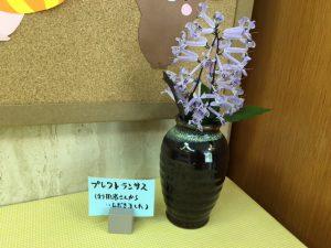 たまにきれいな画像を。 利用者さんにいただいた花です。